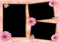 Molduras floridas (2).png