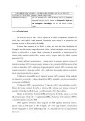 Resumo Silvagne Lara.doc