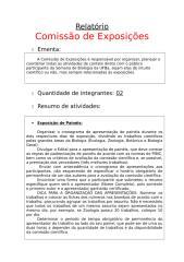 Comissão de Exposições.doc