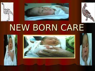 NEW BORN CARE.ppt